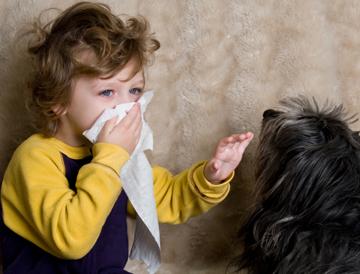 аллергия картинка