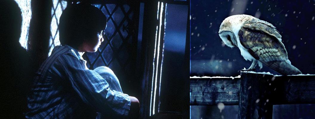 Кому нравится «Гарри Поттер»