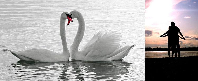 Как построить гармоничные отношения - фото 4
